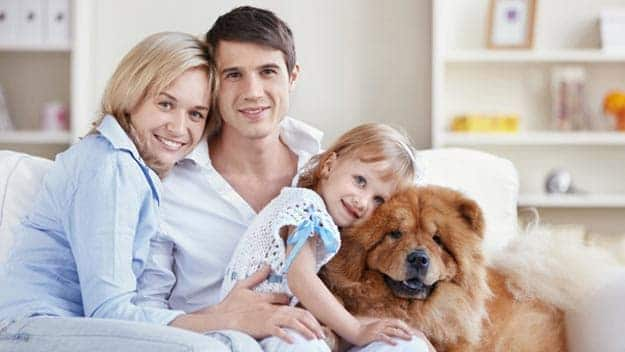Wills & Trusts dog-young-family Direct Wills Milton Keynes Village